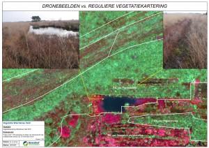 Dronebeelden vs. Reguliere vegetatiekartering